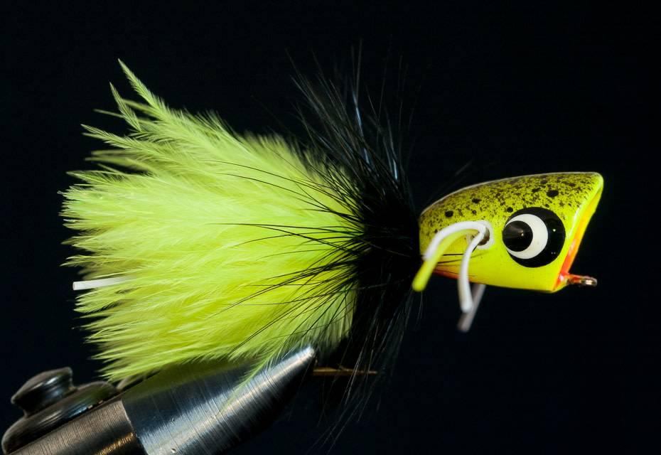 Bass Popper