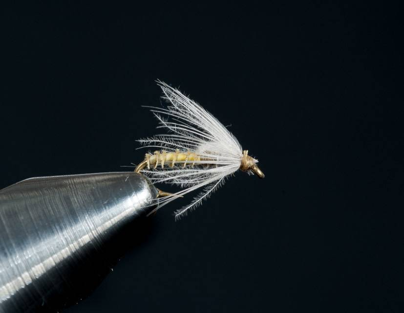 BWO Pulsating Emerger