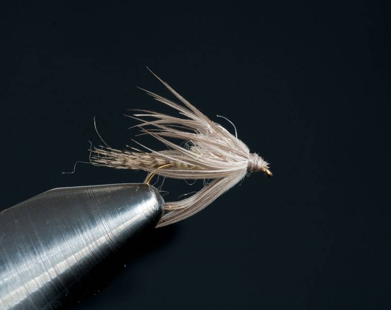 Epeorus Soft Hackle