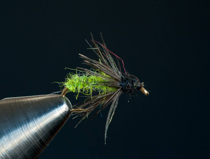 Green Caddis Larva