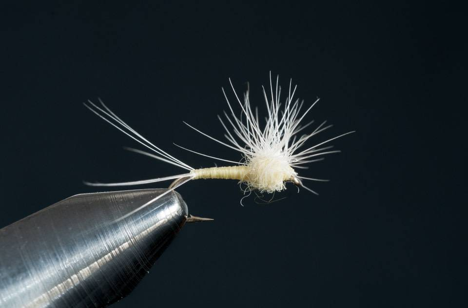 Hackle Stacker PMD