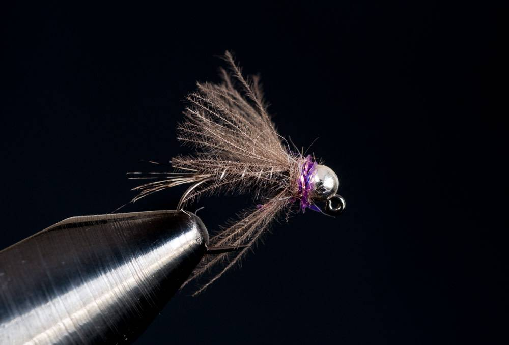 Hot Spot Jig Purple