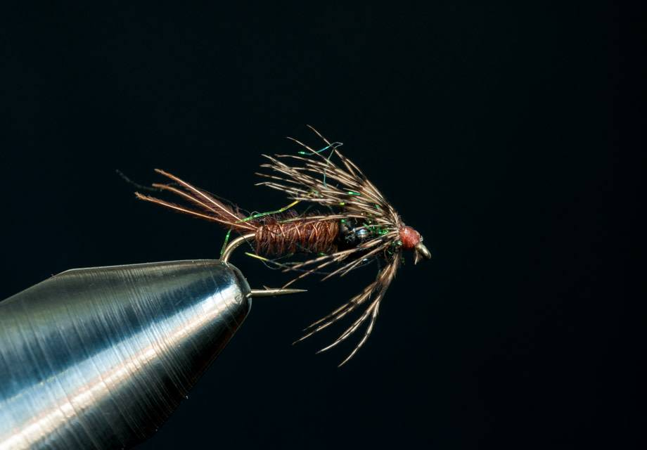 Tungsten Pheasant Tail Soft Hackle