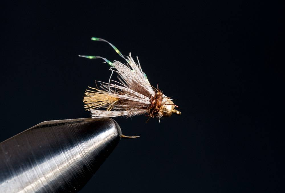 Plan C Caddis