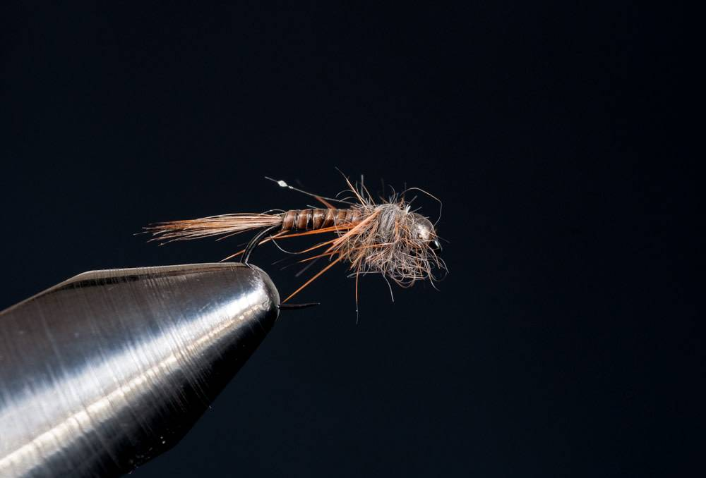 Skinny Quill Nymph