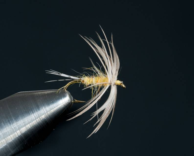 PMD Soft Hackle