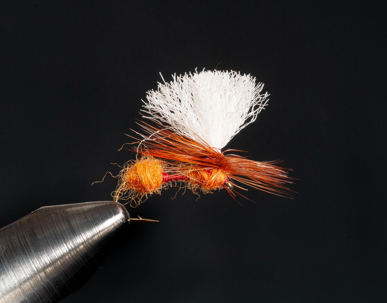 Arrick's Para-Ant