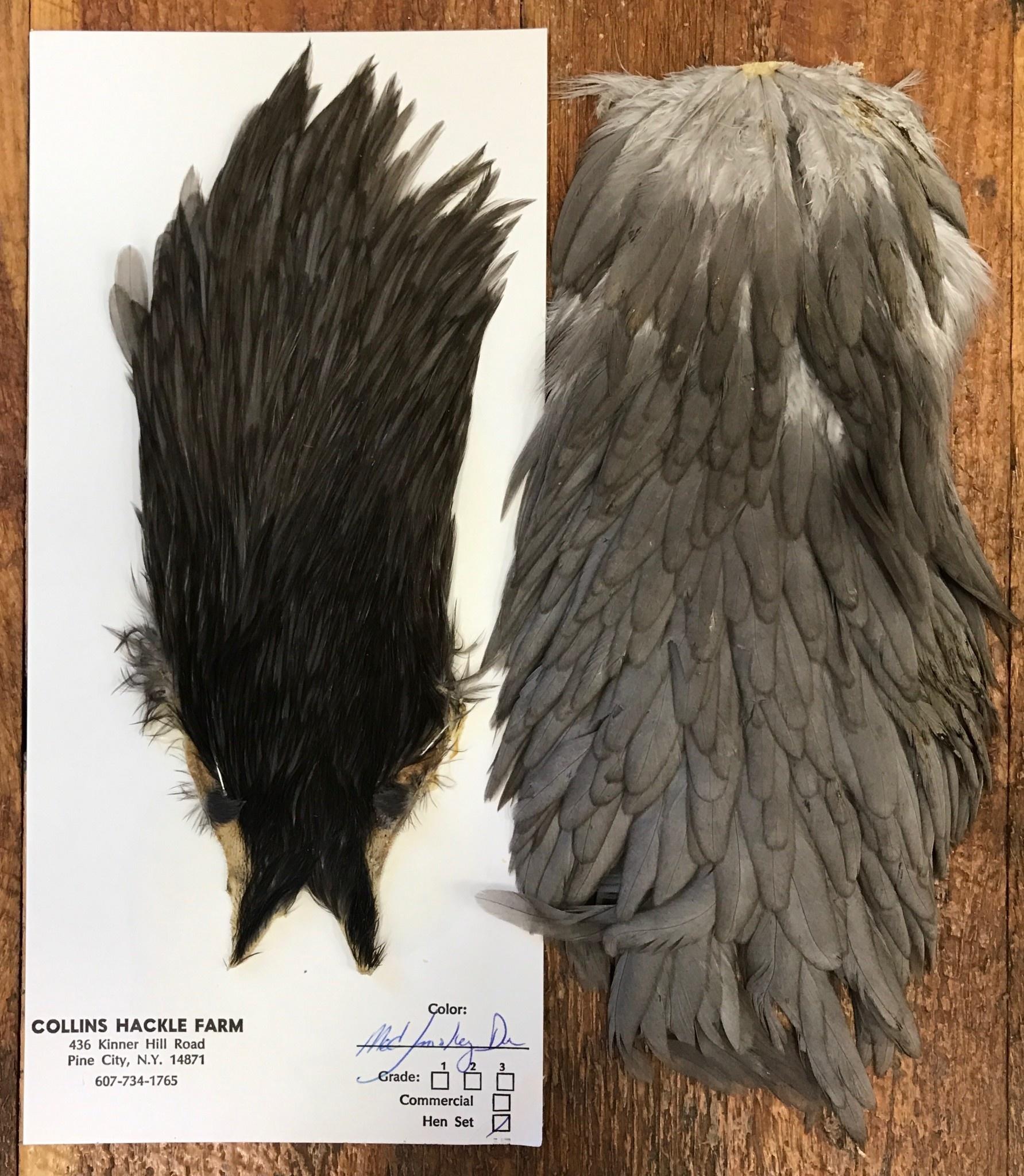 Collins Hen Cape/Saddle Medium Smokey Dun