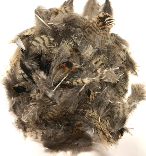 English Woodcock Body Feathers