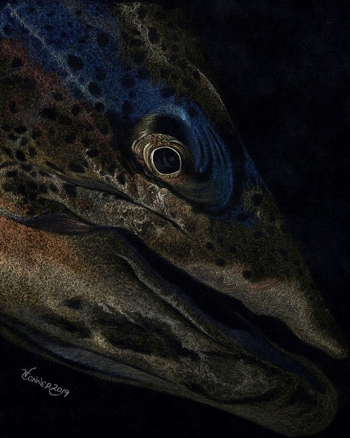 Conner Art - Trout at Night Card