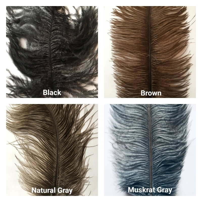 "Ostrich Plumes 14""-16"""