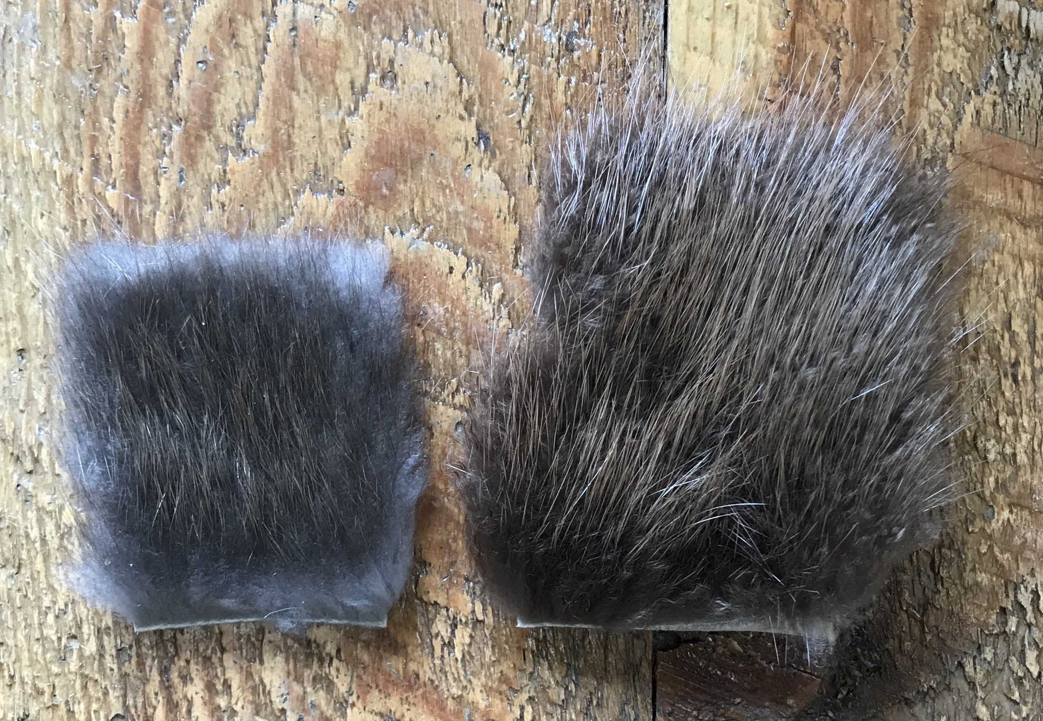 Beaver Fur Patch