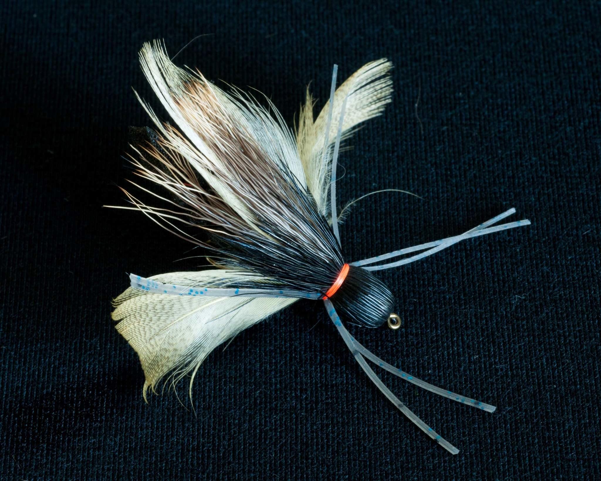 Flutter Bug