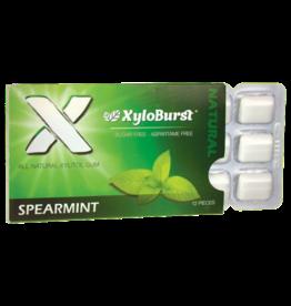 XyloBurst Spearmint Gum - XyloBurst