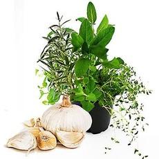 Prairie Oils & Vinegars Italian Herbs Dark Balsamic Vinegar - 200 mL