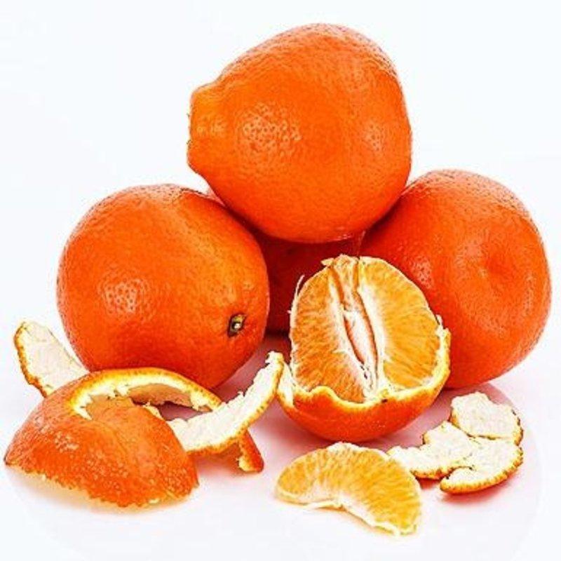 Prairie Oils & Vinegars Honeybell Orange White Balsamic Vinegars- 200ml