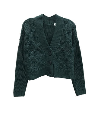 RD Style DP Spruce Cropped Cable Cardigan