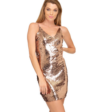 She & Sky Sequin Dress