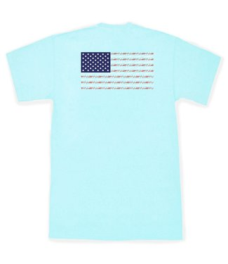 Coastal Cotton Coastal Cotton American Flag Performance Tee