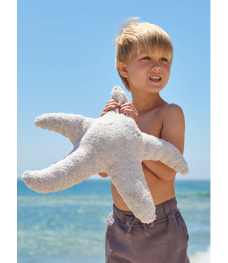 Barefoot Dreams Starfish Tooth Fairy Pillow in Stone