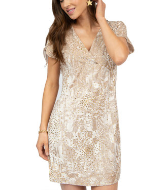 Uncle Frank Shimmer Velvet Star Dress