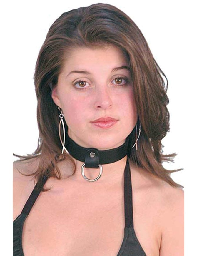 Leather D-ring choker.