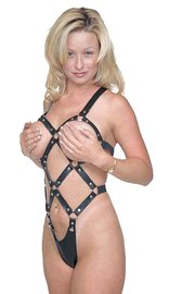 Jamin Leather Leather Snap Away Harness Teddy #U196H