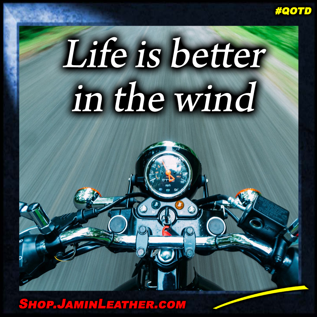 Life is better in the wind!