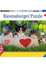 Ravensburger Chatons au repos 2x24pcs