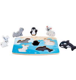 Hape Puzzle tactile animaux polaires