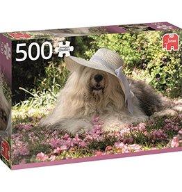 Jumbo Sophie dans un lit de fleur 500 pcs