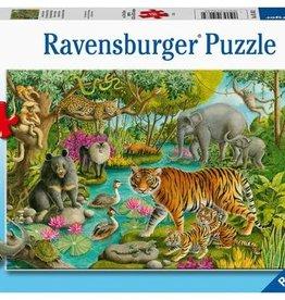 Ravensburger Les animaux de l'Inde 60pcs