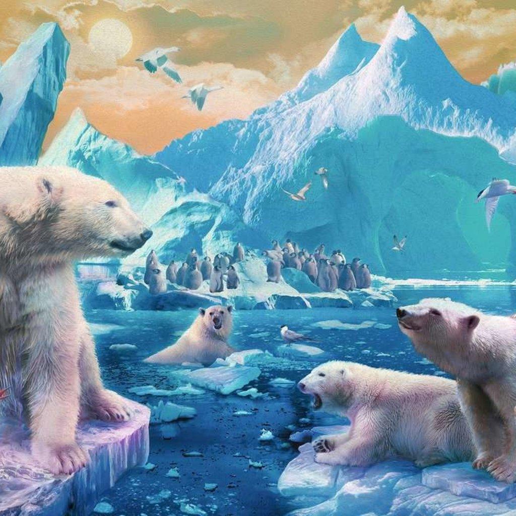 Ravensburger Au royaume des ours polaires 300pièces