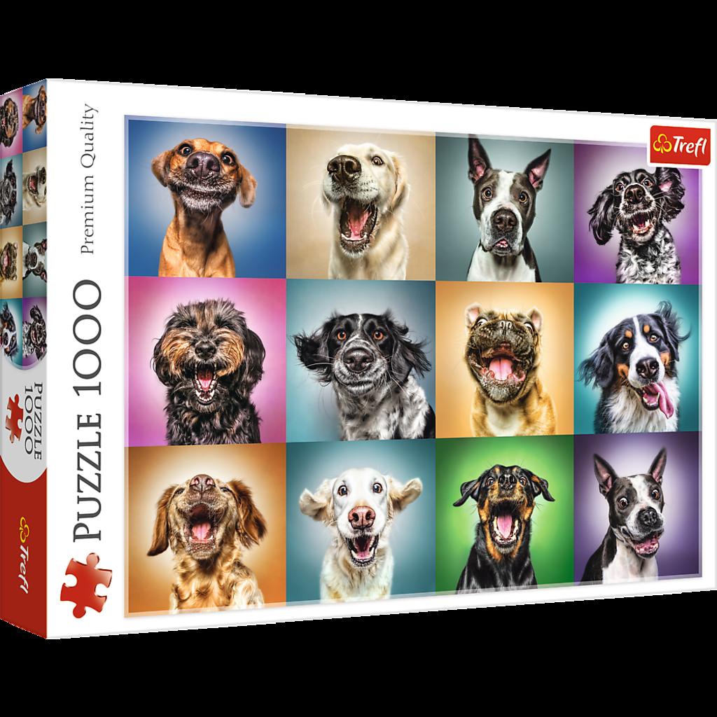 Trefl Portraits de chiens drôles - 1000 pièces