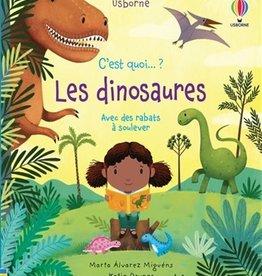 USBORNE C'est quoi... les dinosaures ?