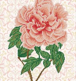 Diamond Dotz Rose Blush
