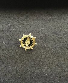 LAPEL PIN, TC, GOLD