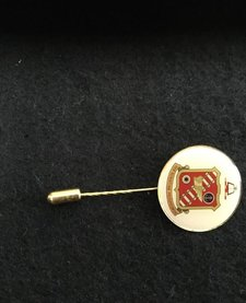 LAPEL PIN, T-SCHOOL