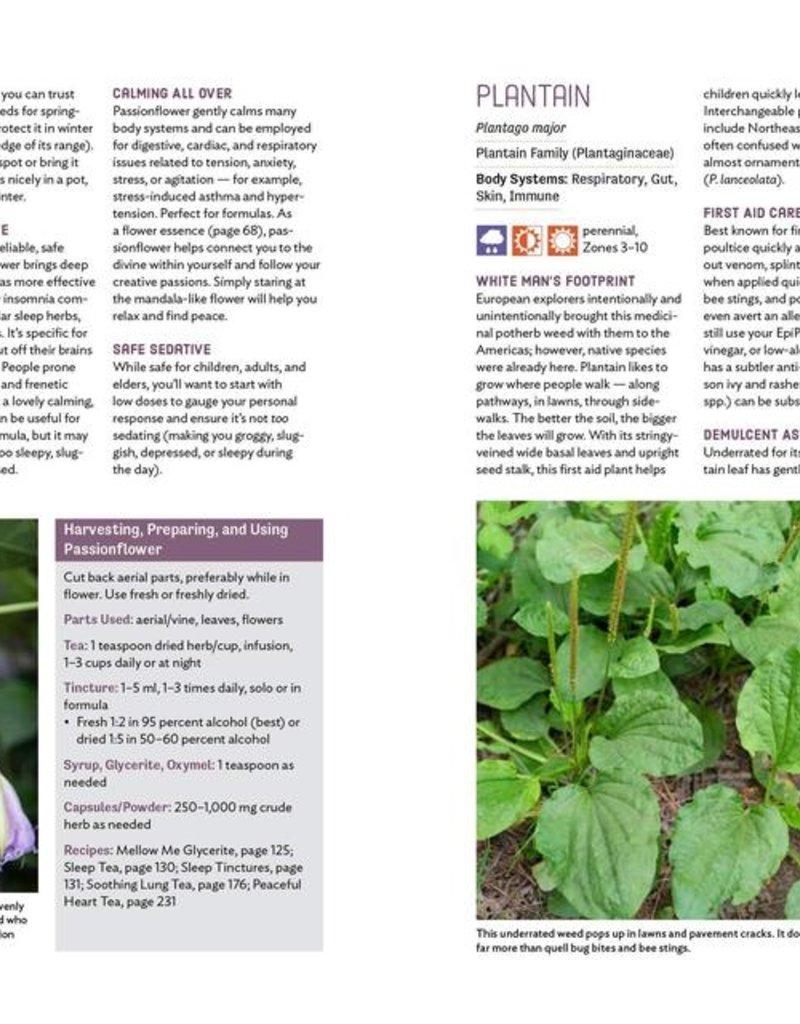 Grow Your Own Herbal Remedies - Maria Noel Groves