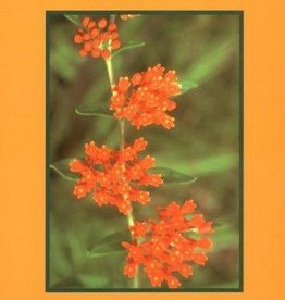 Medicinal Plants of the Mountain West - Michael Moore