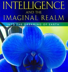 Plant Intelligence & the Imaginal Realm - Stephen Buhner
