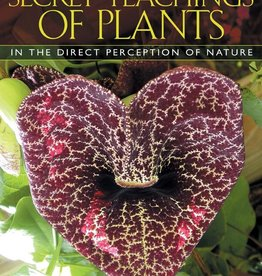 Secret Teachings of Plants - Stephen Buhner