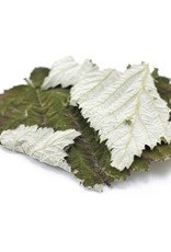 Raspberry Leaf, LOCAL, organic, bulk/oz