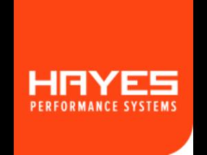 Hayes Brake