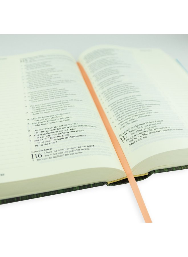 ESV Large Print Journaling Bible: Albion Theme