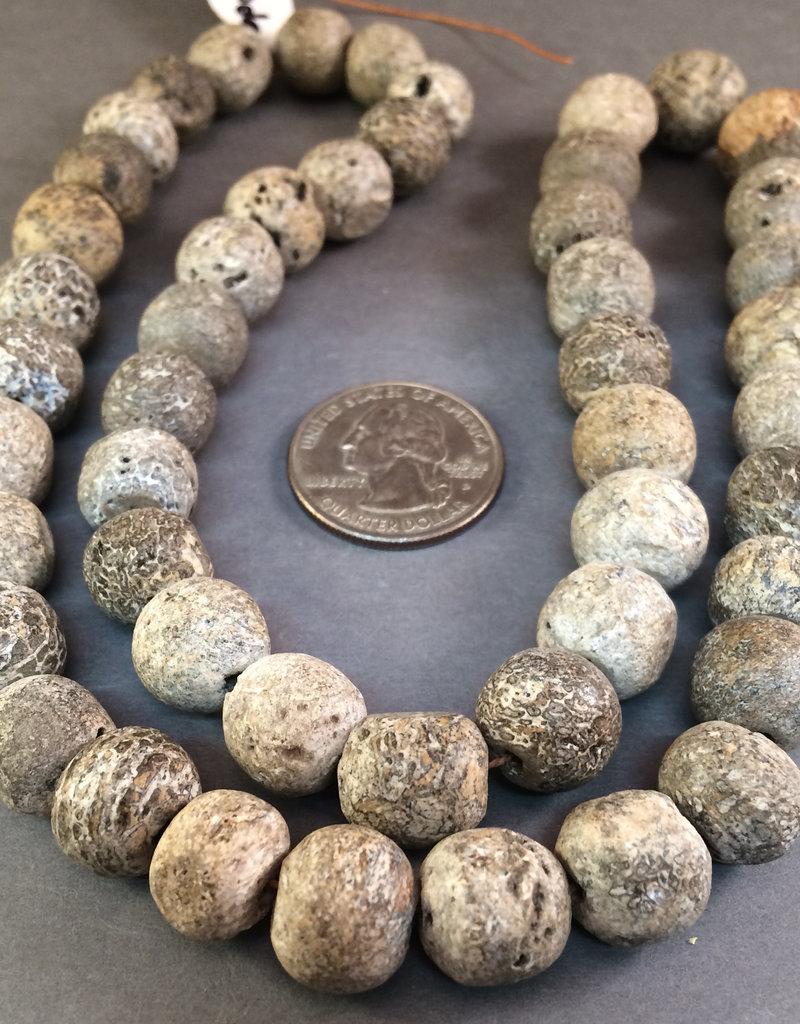 Stegodon Beads