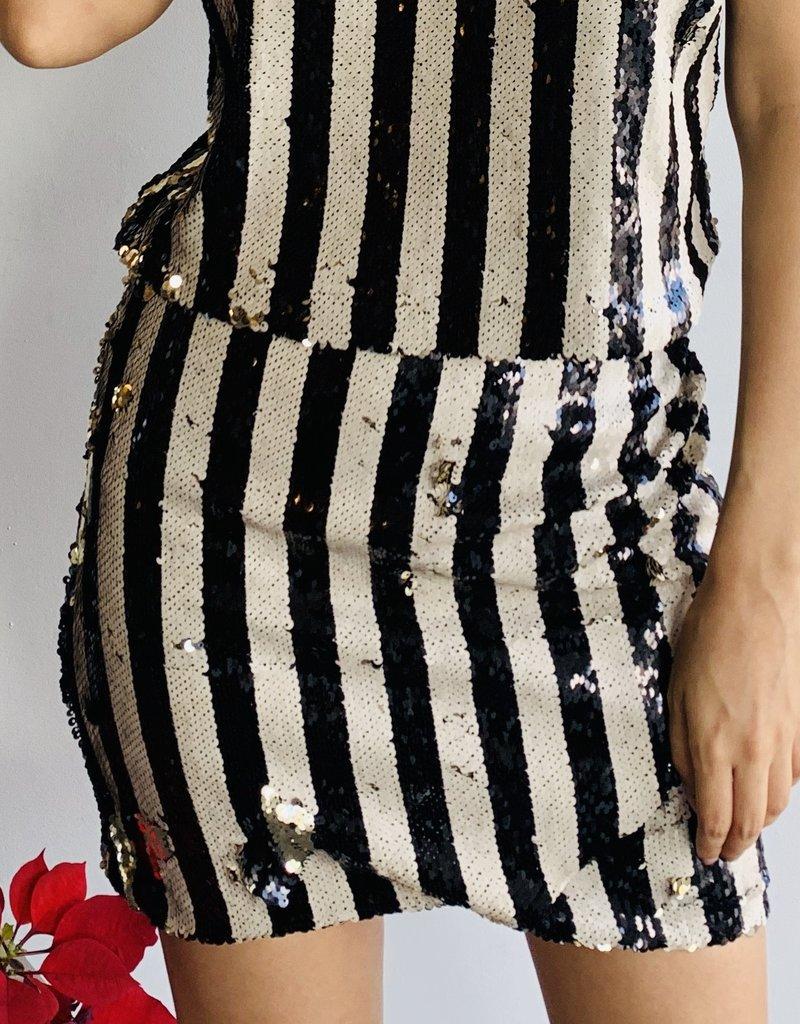 All Over Stripe Sequins Skirt