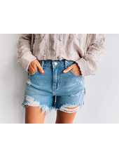 HighRise Destroy Shorts
