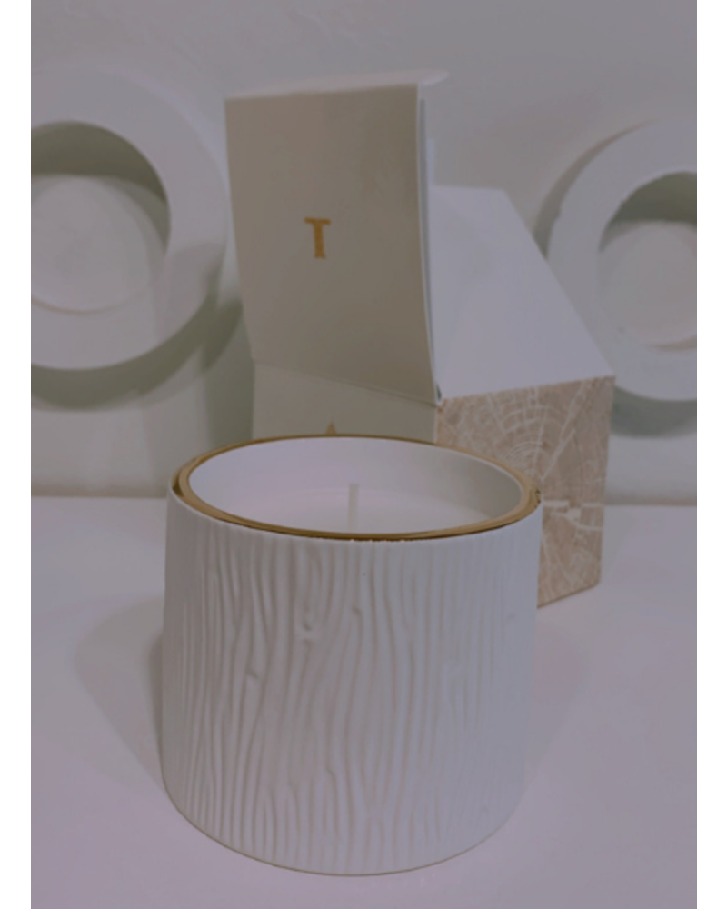 Frasier Fir Gilded Ceramic Poured Candle Petite