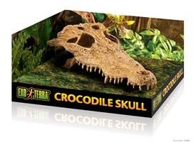 Exo Terra Exo Terra Crocodile Skull
